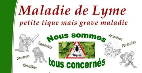 Lyme : attention danger!